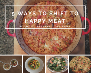 "5 Ways to Shift to Sustainably Raised ""Happy Meat"" Without Breaking the Bank"